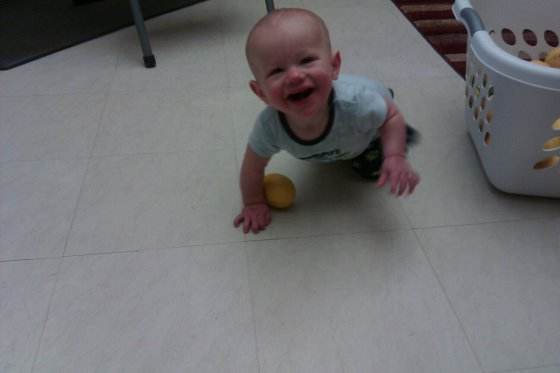 The Dude Playing With Lemons.  8 months old.